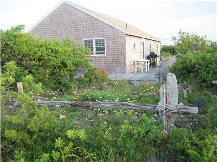 North Truro Cape Cod vacation rental - Deck wraps around three sides of the house