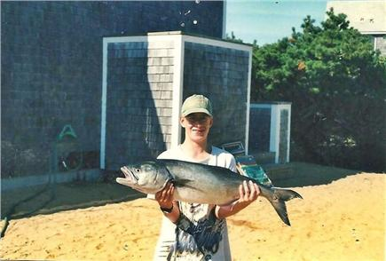 North Truro Cape Cod vacation rental - Excellent fishing off the beach when in season