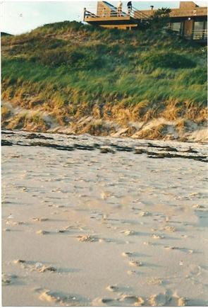 North Truro Cape Cod vacation rental - Another picture of our Beach