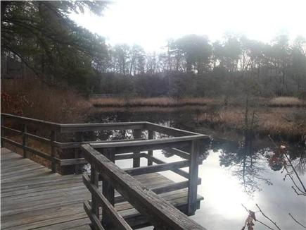Wellfleet Cape Cod vacation rental - Turtle & Heron viewing area in the off season