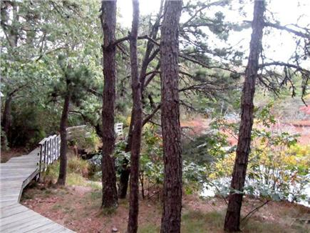 Wellfleet Cape Cod vacation rental - Boardwalk surrounding pond