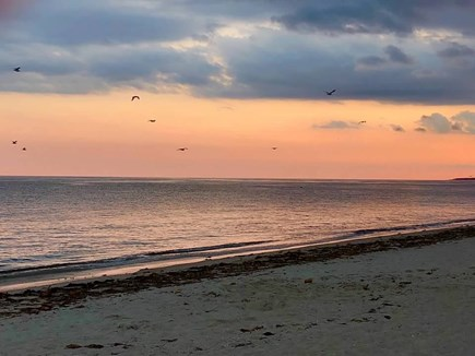 Dennisport Cape Cod vacation rental - West Dennis Beach Sunset