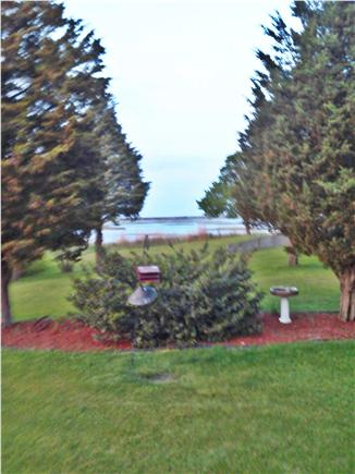 Sandwich Cape Cod vacation rental - View the birds from sun room
