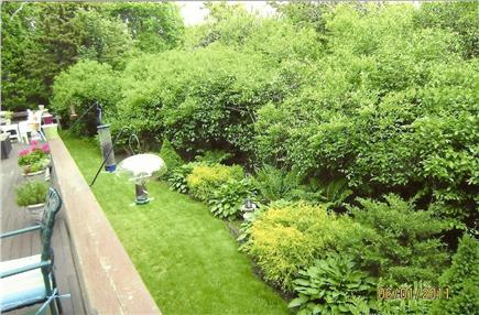 Dennis Village Cape Cod vacation rental - View from deck overlooking the private yard & conservation land