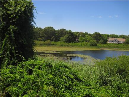 Chatham Cape Cod vacation rental - View of property from Perch Pond
