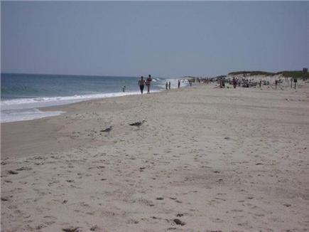 Orleans Cape Cod vacation rental - Nauset Beach just 2 miles away