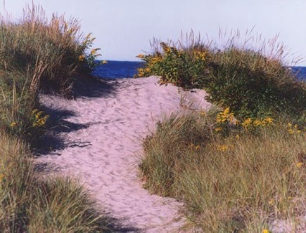 Eastham Cape Cod vacation rental - Path to First Encounter beach