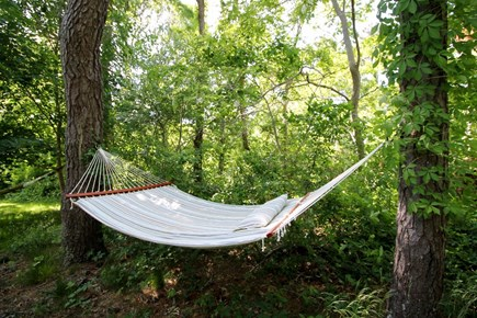 Eastham Cape Cod vacation rental - Nothing says summer like a hammock!