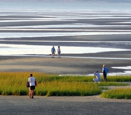Eastham Cape Cod vacation rental - First Encounter Beach -- you can walk way out at low tide!
