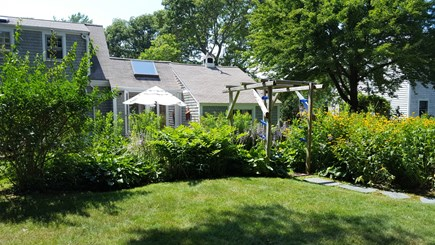 Osterville Osterville vacation rental - The backyard
