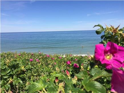 Eastham Cape Cod vacation rental - Warm water Cooks Brook bay beach 1 1/2 miles from house