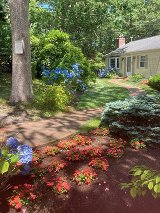 Chatham Cape Cod vacation rental - Beautiful front yard