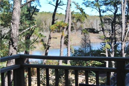 Wellfleet Cape Cod vacation rental - Wooded setting with marsh views