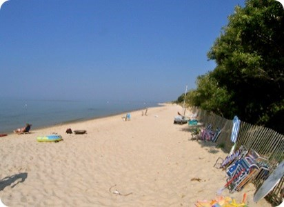 Brewster Cape Cod vacation rental - You will love this beach.