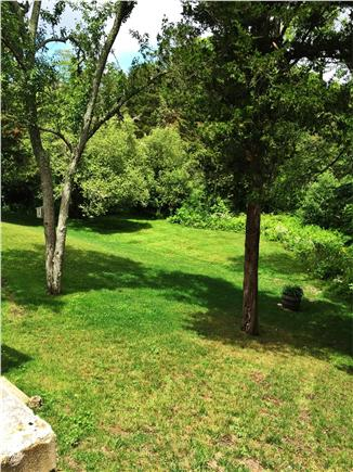 East Orleans Cape Cod vacation rental - Large backyard for your enjoyment
