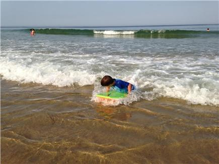 Wellfleet Cape Cod vacation rental - Short drive to ocean beaches (and bay beaches, too)