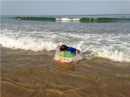 Wellfleet Cape Cod vacation rental - Short drive to ocean beaches (and bay beaches, too)