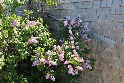 Truro Cape Cod vacation rental - Nautical Touch