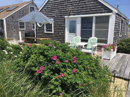 Truro Cape Cod vacation rental - Front view of cottage facing the bay