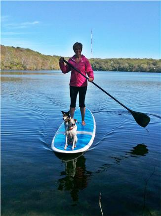 West Barnstable Cape Cod vacation rental - Paddle Boarding on Garret's Pond