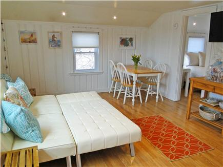 Hyannis  Cape Cod vacation rental - Relax, sit back, get your feet up and watch movies or read