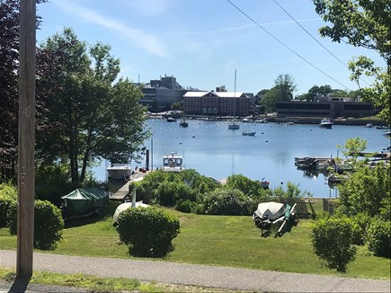 Woods Hole, Close to town and beach Cape Cod vacation rental - View from porch