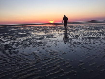 Eastham Cape Cod vacation rental - Walking on the bay in front of house at low tide