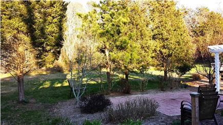 Eastham Cape Cod vacation rental - Patio area with gardens, trees and out to the  woods