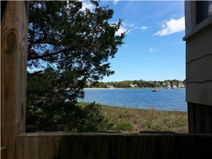 Pocasset, Patuisset Pocasset vacation rental - View from inside the outdoor shower