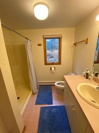 Wellfleet Cape Cod vacation rental - Main floor en suite bath with shower, bedroom #1
