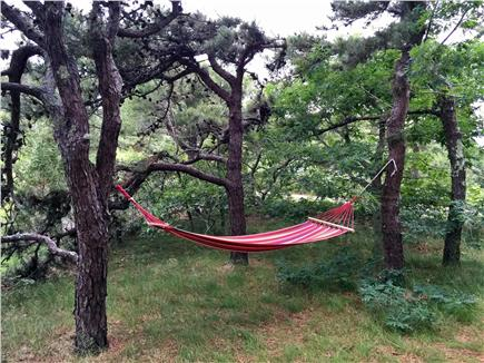 Truro Cape Cod vacation rental - Lots of places to relax