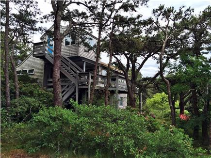 Truro Cape Cod vacation rental - Privacy guaranteed; view of house through the trees