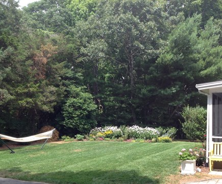 Cotuit Cotuit vacation rental - Flat back yard is great for lawn games or a snooze in the hammock