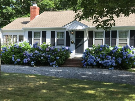 South yarmouth Cape Cod vacation rental - Front entrance