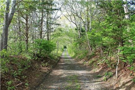 Brewster Cape Cod vacation rental - Road to our private association beach.