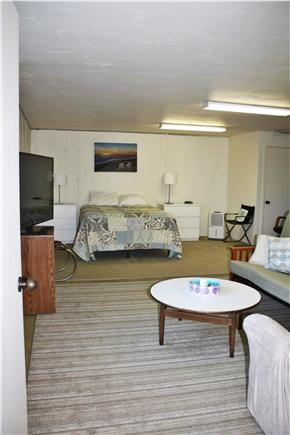 Truro Cape Cod vacation rental - Downstairs annex - hang out area with huge TV!