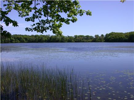 Brewster Cape Cod vacation rental - Greenland Pond