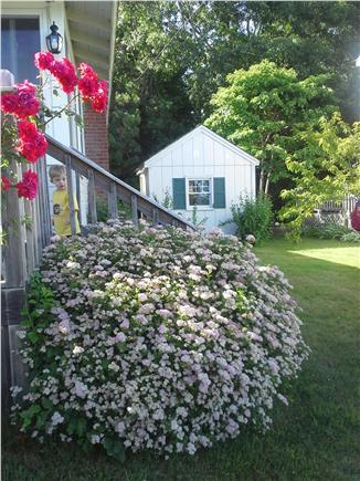 Wareham MA vacation rental - Side of house/shed