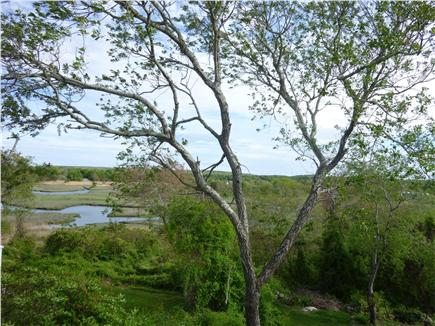 Sandwich Cape Cod vacation rental - View of the creek from the deck