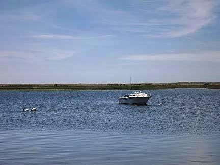 Chatham Cape Cod vacation rental - Oyster River at end of private path; Nantucket sound backgound