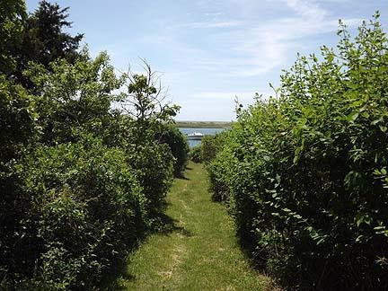 Chatham Cape Cod vacation rental - Private path which leads to private beach area on Oyster River
