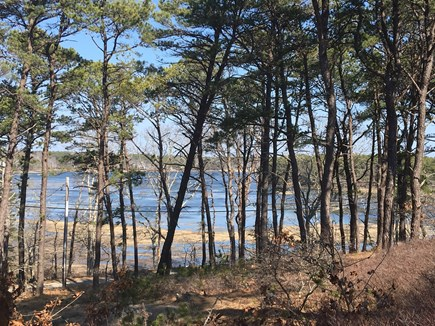 Wellfleet Cape Cod vacation rental - Lovely View from deck and many rooms.