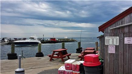 Falmouth, Teaticket Cape Cod vacation rental - Take in the view while catching a bite at a local eatery.