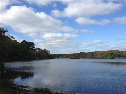 Brewster Cape Cod vacation rental - Griffiths Pond - Private Pond located across from property