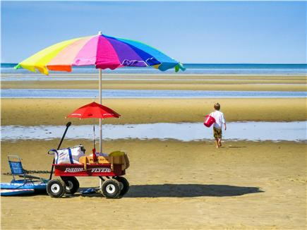 Eastham Cape Cod vacation rental - Play Time on the Beach