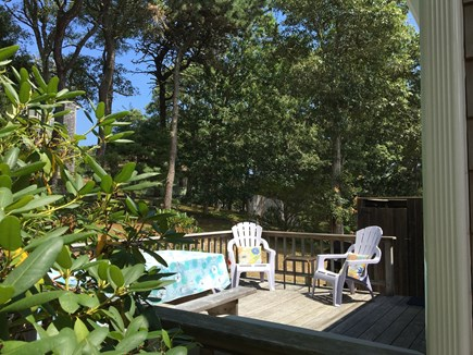Chatham Cape Cod vacation rental - Plenty of privacy - picnic table & extra chairs