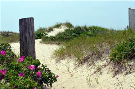 West Dennis Cape Cod vacation rental - Your Cape Cod oasis is just over the dune!