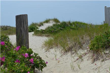 West Dennis Cape Cod vacation rental - Paradise is just over the dune...