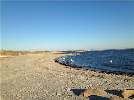 South Chatham Cape Cod Vacation Al Forest Beach Just 4 Mile Away