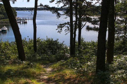 Cotuit Cotuit vacation rental - Path down to the beach